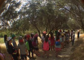 Θερινό σχολείο στο πάρκο Αντώνης Τρίτσης για τα παιδιά που δεν θα πάνε διακοπές - Κεντρική Εικόνα