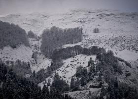 Κρύο και χιονοπτώσεις στην Κεντρική και Νότια Ελλάδα (Video) - Κεντρική Εικόνα