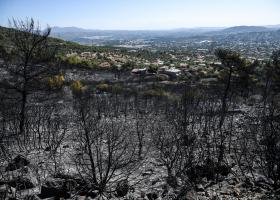 Σε ύφεση η πυρκαγιά στον Υμηττό - Κεντρική Εικόνα