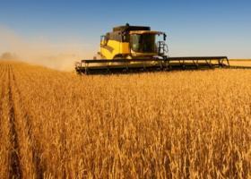 Πώς υπολογίζονται οι ασφαλιστικές εισφορές για τους αγρότες - Κεντρική Εικόνα