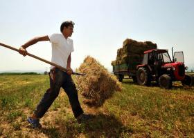 Aυξήσεις 40%-100% στις ασφαλιστικές εισφορές ... θερίζουν τους αγρότες από το 2017 - Κεντρική Εικόνα