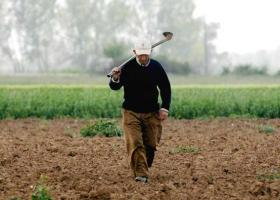 Προς ψήφιση το ακατάσχετο για τους λογαριασμούς των αγροτών - Στις 7.500 ευρώ το ύψος του - Κεντρική Εικόνα