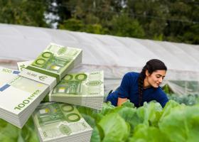 Διπλές οι εισφορές των αγροτών στον ΟΓΑ τον Φεβρουάριο - Κεντρική Εικόνα