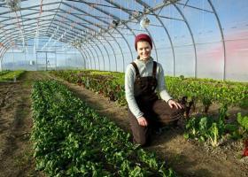Πήρε ΦΕΚ το «Ταμείο Εγγυήσεων Αγροτικής Ανάπτυξης»  - Κεντρική Εικόνα