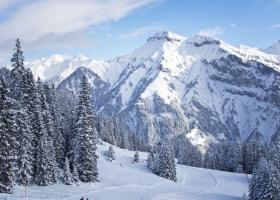 Δέκα άνθρωποι έχασαν τη ζωή τους το Σαββατοκύριακο στις Άλπεις - Κεντρική Εικόνα