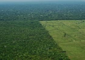 Ο Αμαζόνιος εκπέμπει SOS - Η εκδάσωση ξεπέρασε τον Ιούνιο το 88%  - Κεντρική Εικόνα