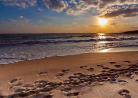 Η άμμος είναι πλέον εξίσου πολύτιμη με τον χρυσό - Κεντρική Εικόνα