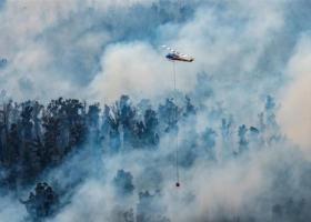 Αισιόδοξα μηνύματα για την Αυστραλία: Υπό έλεγχο η μεγαλύτερη πυρκαγιά της χώρας - Έρχονται και βροχές - Κεντρική Εικόνα