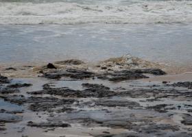 Ελληνικό τάνκερ ύποπτο για τεράστια πετρελαιοκηλίδα στη Βραζιλία - Τι απαντά η εταιρεία - Κεντρική Εικόνα