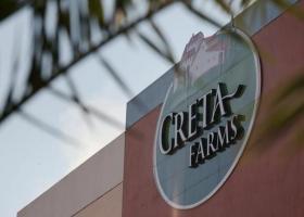 Πράσινο φως από το Πρωτοδικείο: Στον Βιντζηλαίο η Creta Farms - Κεντρική Εικόνα