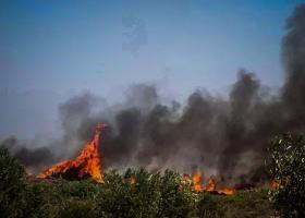 Πολύ υψηλός ο κίνδυνος πυρκαγιάς σε έξι περιφέρειες της Ελλάδας - Κεντρική Εικόνα
