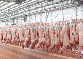 Ακατάλληλα κρέατα κατασχέθηκαν σε ψητοπωλείο στον Πειραιά - Κεντρική Εικόνα
