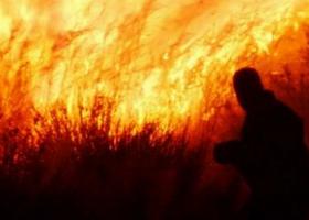 «Έβαζα φωτιές για να εμφανίζομαι μετά ως εθελοντής πυροσβέστης» - Κεντρική Εικόνα