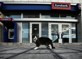 Eurobank: Το 60% με 70% των πελατών θα κάνουν αίτηση για την προστασία α' κατοικίας - Κεντρική Εικόνα