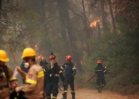 Φωτιά Εύβοια: Drone της πυροσβεστικής καταγράφει εικόνες από ψηλά (video) - Κεντρική Εικόνα