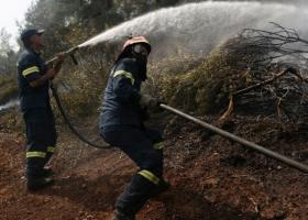 Χωρίς ενεργό μέτωπο η φωτιά στην Εύβοια - Στάχτη 24 χιλιάδες στρέμματα - Κεντρική Εικόνα