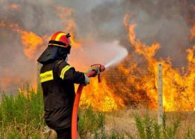 Σε ύφεση η φωτιά στην Κλειτορία Καλαβρύτων - Κεντρική Εικόνα