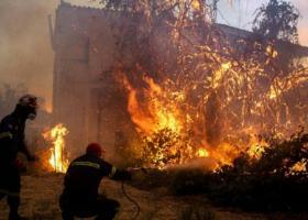 Το κινητό «πρόδωσε» τον ύποπτο για την πυρκαγιά στην Εύβοια - Καταρρίπτεται το άλλοθι του 33χρονου - Κεντρική Εικόνα