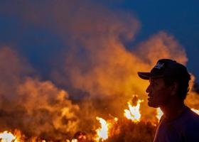 Η Βραζιλία αναλαμβάνει επιτέλους δράση για τις πυρκαγιές στον Αμαζόνιο - Κεντρική Εικόνα
