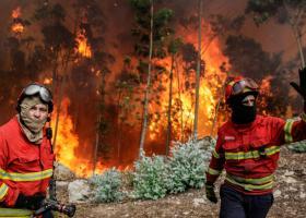 Μαίνονται οι πυρκαγιές στην Πορτογαλία - Στους 63 οι νεκροί - Κεντρική Εικόνα