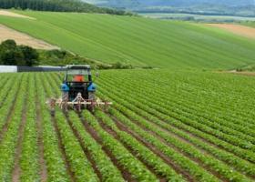 Χιλιάδες αγρότες και δεκάδες επιχειρήσεις έχουν ωφεληθεί από Πρόγραμμα Συμβολαιακής Γεωργίας, της Τράπεζας Πειραιώς - Κεντρική Εικόνα