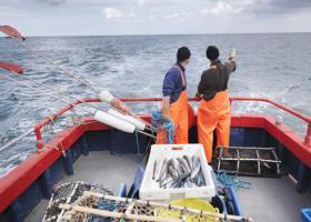 Στους Γάλλους ψαράδες το πρώτο «χαστούκι» από το Brexit: Απαγόρευση αλιείας σε περιοχή της Μάγχης! - Κεντρική Εικόνα