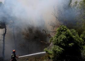 Σε ύφεση η φωτιά που απείλησε το Καρπενήσι - Κεντρική Εικόνα