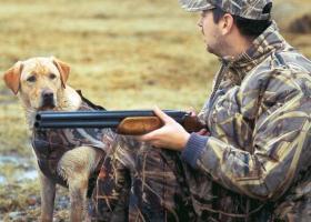 Πήγε για κυνήγι αλλά αυτοτραυματίστηκε θανάσιμα - Κεντρική Εικόνα