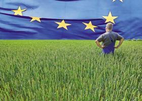 """Ο Μακρόν ζήτησε να """"επανεφευρεθεί"""" η κοινή αγροτική πολιτική της ΕΕ - Κεντρική Εικόνα"""