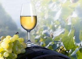 Τα κρασιά του Αιγαίου στην Αθήνα - Κεντρική Εικόνα