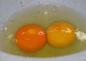 Ποιον από τους δύο κρόκους αυγών θα επέλεγες; - Κεντρική Εικόνα