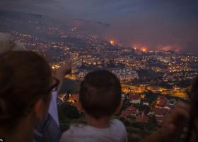 Τρεις νεκροί, τεράστιες καταστροφές από τη φωτιά στην πορτογαλική Μαδέιρα - Κεντρική Εικόνα