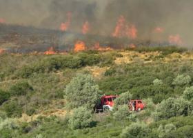 Σε εξέλιξη πυρκαγιά στη Νέα Μάκρη - Κεντρική Εικόνα