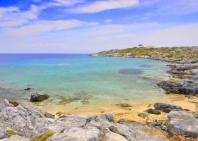 Το θαλάσσιο τέρας της άγνωστης Ντίας (video) - Κεντρική Εικόνα