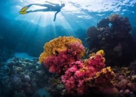 Ο πλανήτης μας συνεχίζει να εκπέμπει SOS: Νέο ιστορικό ρεκόρ θερμοκρασίας των ωκεανών το 2019 - Κεντρική Εικόνα