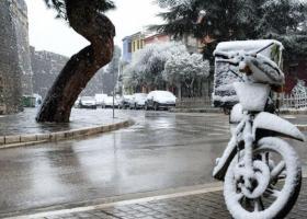 «Υγρό χιόνι»: Η ιδιαιτερότητα του φαινομένου που «σάρωσε» τα δέντρα στην Αθήνα - Κεντρική Εικόνα