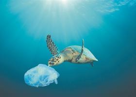 Καναδάς: Τέλος τα πλαστικά μιας χρήσης από το 2021 - Κεντρική Εικόνα