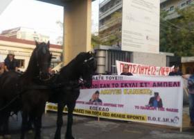 Υγειονομικοί... καβάλα σε άλογα και κάρα διαδηλώνουν για τα νοσοκομεία (ΦΩΤΟ-ΒΙΝΤΕΟ) - Κεντρική Εικόνα