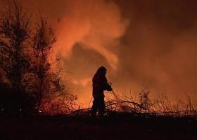 Πορτογαλία: Στους 41 ανήλθε ο αριθμός των νεκρών από τις φονικές πυρκαγιές - Κεντρική Εικόνα