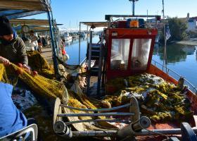 Χρηματοδότηση 5,1 εκατ. ευρώ για 148 έργα εκσυγχρονισμού αλιευτικών σκαφών - Κεντρική Εικόνα