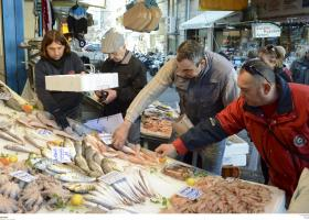 Έρχεται πιστοποιητικό αλιευμάτων: Θα γνωρίζουμε μέχρι και ποιο... σκάφος ψάρεψε τα ψάρια που αγοράσαμε - Κεντρική Εικόνα