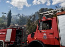 Σε ύφεση η πυρκαγιά που εκδηλώθηκε στην περιοχή Κλήμα του δήμου Δωρίδας - Κεντρική Εικόνα