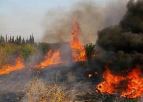 Τρία νέα μέτωπα φωτιάς στη Ζάκυνθο - Κεντρική Εικόνα