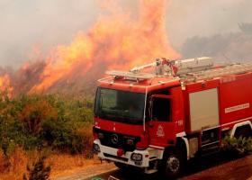 Σε εξέλιξη πυρκαγιά στην Αγία Τριάδα Θεσσαλονίκης - Κεντρική Εικόνα