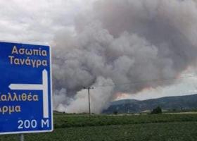 Σε εξέλιξη η πυρκαγιά σε δασική έκταση στην Ασωπία Τανάγρας - Κεντρική Εικόνα