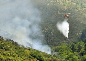 Εκτός ελέγχου η φωτιά στον Πρόδρομο Βοιωτίας κατευθύνεται προς Αττική - Κεντρική Εικόνα