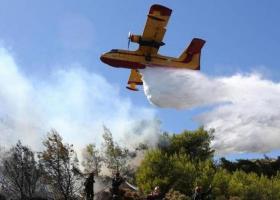 Εικόνα από δορυφόρο δείχνει το τεράστιο μέγεθος της φωτιάς στη Δίρφυ Εύβοιας - Στον καπνό και η Αττική (photos) - Κεντρική Εικόνα