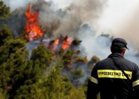 ΟΑΕΔ: Ξεκινάει το πρόγραμμα κοινωφελούς εργασίας για την πυροπροστασία - Κεντρική Εικόνα