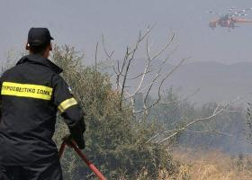 Ισχυρές πυροσβεστικές δυνάμεις στο Κρυονέρι και Περιστέρι της Αμαλιάδας - Κεντρική Εικόνα