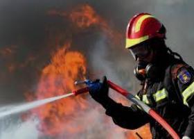 Κάηκαν ζωντανές 80 αγελάδες και αιγοπρόβατα σε κτηνοτροφική επιχείρηση στην Καρδίτσα (photos) - Κεντρική Εικόνα